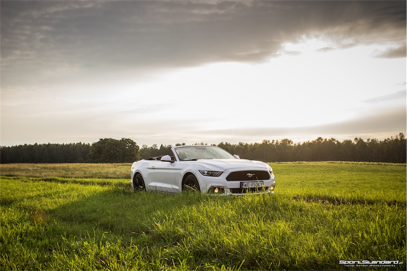 2016_Ford_Mustang_EcoBoost-16